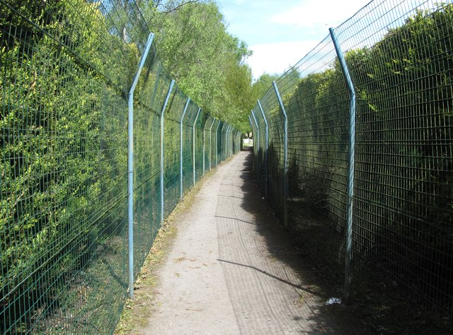 Protective fences on a tree-lined section of the permissive path to the Proleek Tombs
