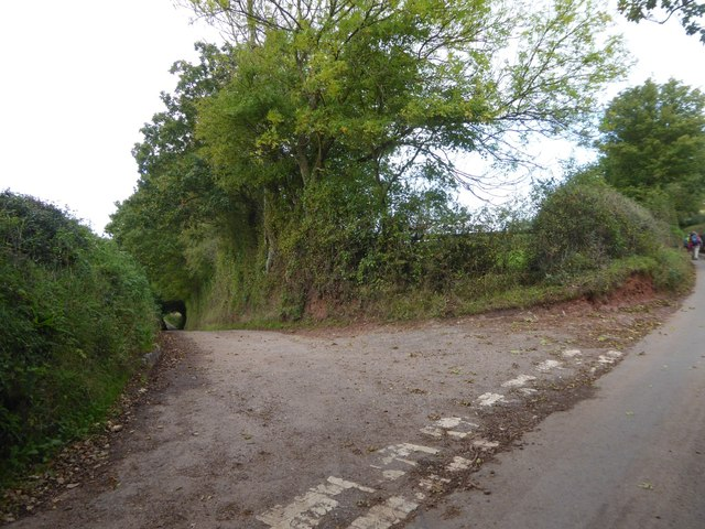 The road to East Bowley