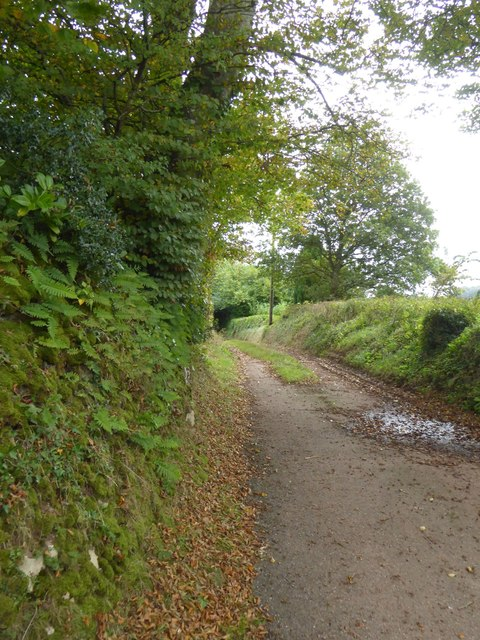 Track north of Terley