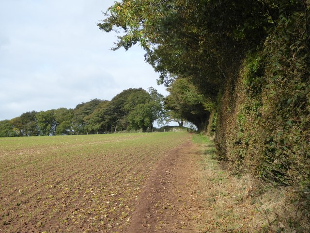 Path to Cadbury Castle