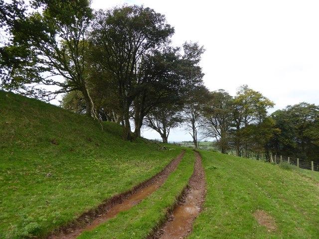 Farm track on north side of Cadbury Castle