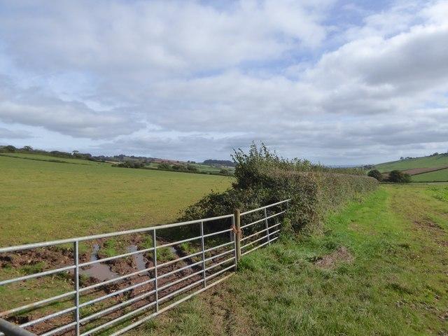 Fields west of West Bowley