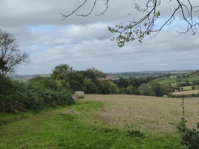 View towards East Coombe Farm from near Kitlake