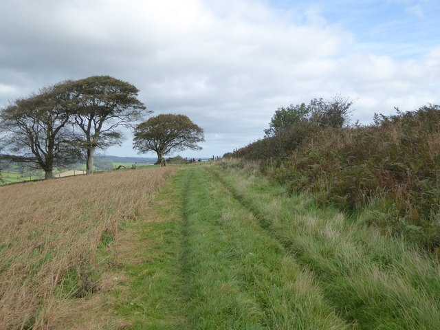 Path and track on Raddon Hill