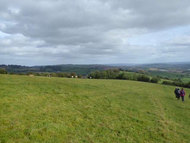 Grassland on east side of Raddon Hill