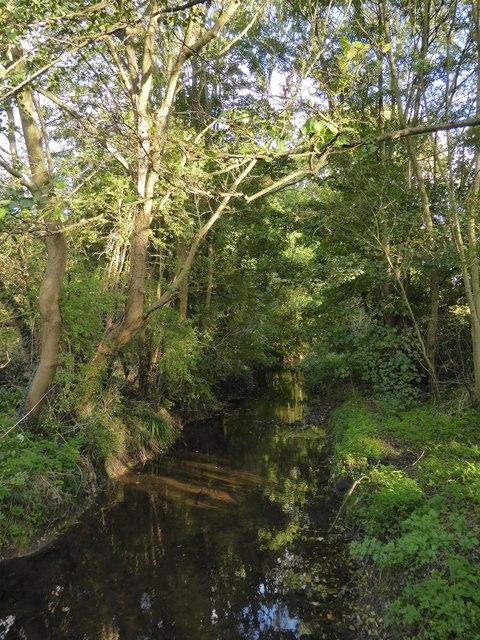 The Hogsmill River at Old Malden