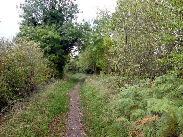 The Maun Valley Trail