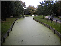 TQ3296 : New River, Enfield (2) by Richard Vince