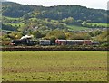 SS9945 : Goods train passes Dunster by Roger Cornfoot