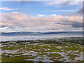 C5522 : Along the Shore of Lough Foyle by David Dixon