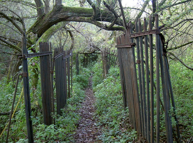 A crumbling fence, a natural archway