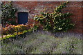 TL5238 : Herbs in the kitchen garden, Audley End by Christopher Hilton