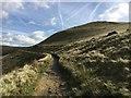 SK0684 : Walkers on the path below South Head  : Week 40