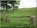 SJ9473 : Field gateway on Buxton Old Road by John S Turner