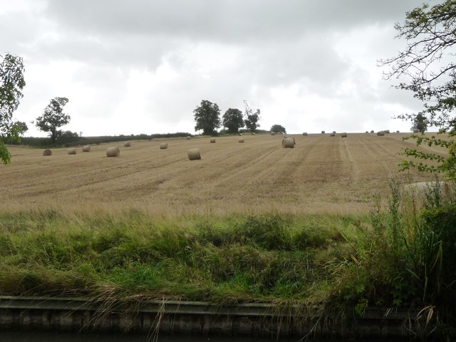 Bales in a field, south-west of Elkington
