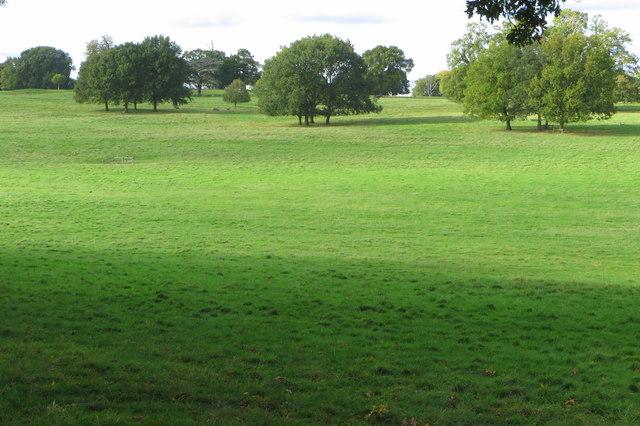 Part of the Althorp Park