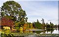 TQ4124 : Ten Foot Pond, Sheffield Park by Ian Capper
