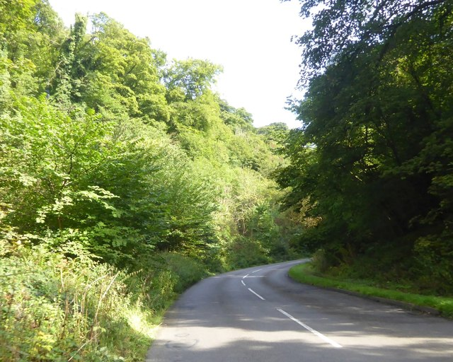 A623 in woods in Middleton Dale