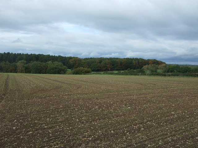 Large field off the B5013