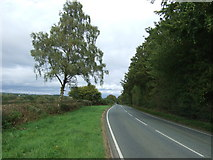 SK0628 : B5013 towards Uttoxeter by JThomas