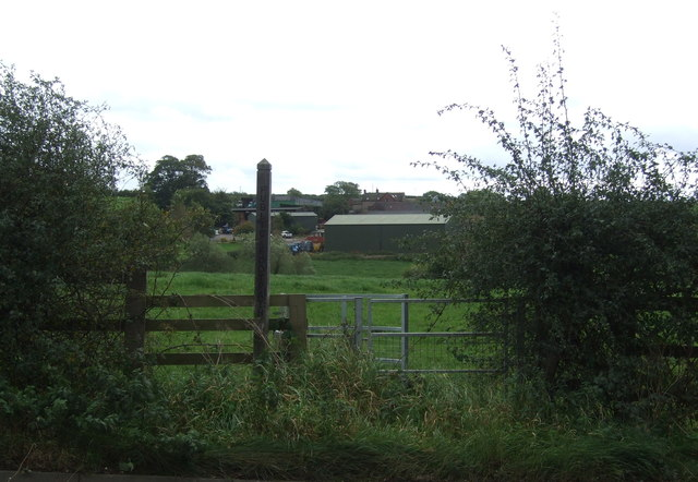 Footpath to Loxley Bank