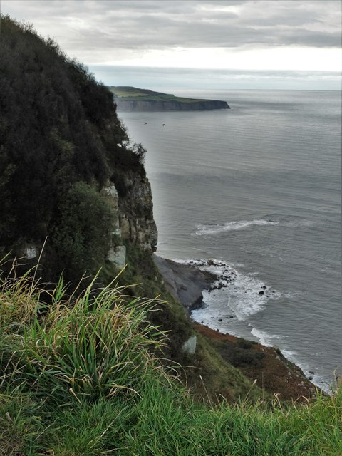 Ravenscar Cliffs - looking to Ness Point