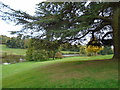 TQ4551 : Grounds of Chartwell House by Paul Gillett