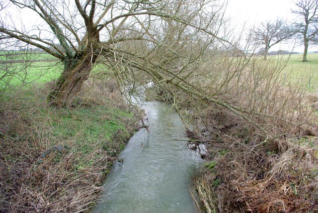 River Eden below Caterfield Bridge
