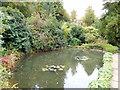 TQ4551 : Fishpond - Chartwell by Paul Gillett