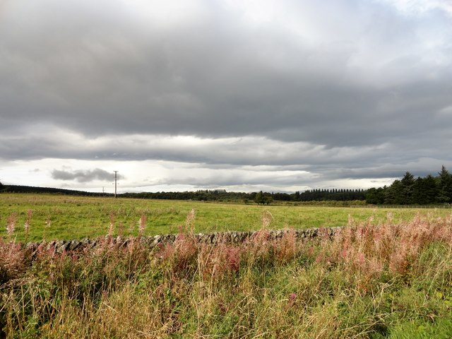 View west from the A68 north of Kiln Pit Hill