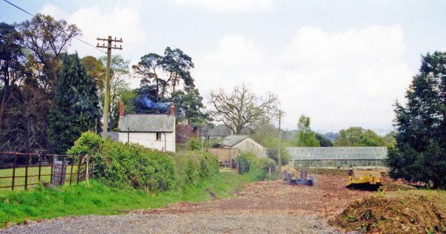 Site of Longdown station, 2000