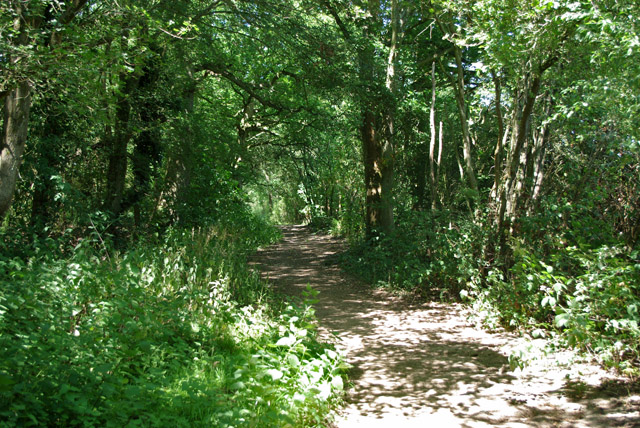 Bridleway north from Stumblehole