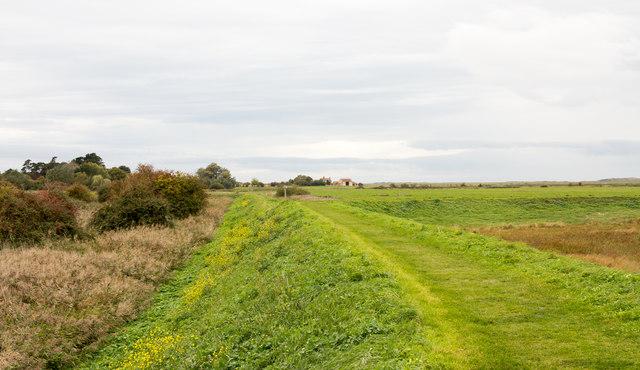 Sea defence east of Burnham Norton