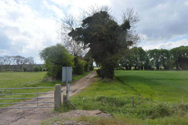 Farm track crossing