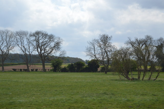 Field by the railway line