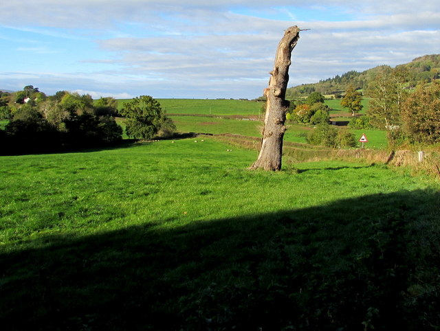 Field on the south side of the B4521 Old Ross Road, Llanddewi Skirrid, Monmouthshire