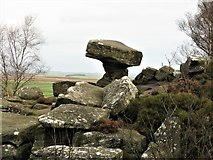 SE2065 : Druid's Writing Desk, Brimham Rocks by G Laird