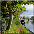 SJ9214 : Visitor moorings at Penkridge in Staffordshire by Roger  Kidd