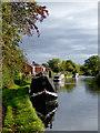 SJ9214 : Canal at Penkridge in Staffordshire : Week 41