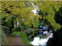 SJ9214 : Canal in Penkridge, Staffordshire by Roger  Kidd