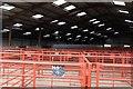 NZ0416 : Cattle Market: the sheds by Bob Harvey