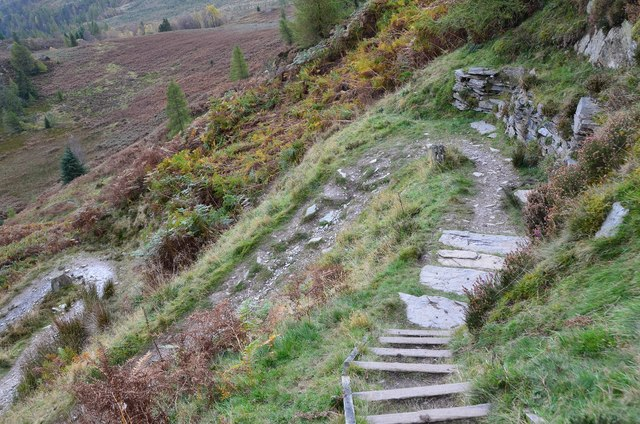 Zigzags on the Birnam Hill path