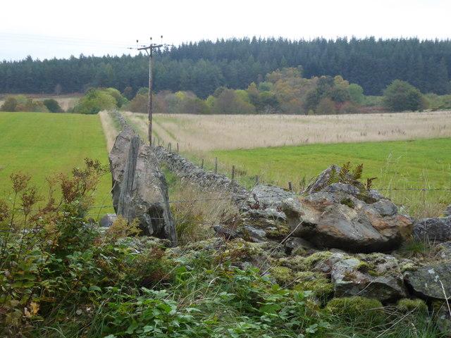 Stone wall field boundary at Brathens