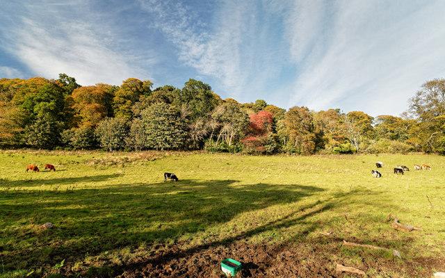 Rosehaugh Estate