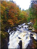 NO0041 : Falls on the River Braan, Ossian's Hall, The Hermitage, Dunkeld by Gordon Brown