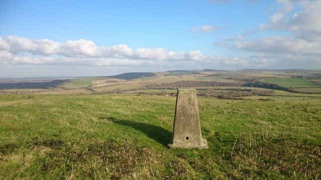 Arundel Park trig point