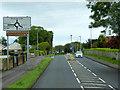 C8534 : Coleraine, Atlantic Road by David Dixon