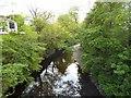 SJ9090 : River Goyt by Gerald England