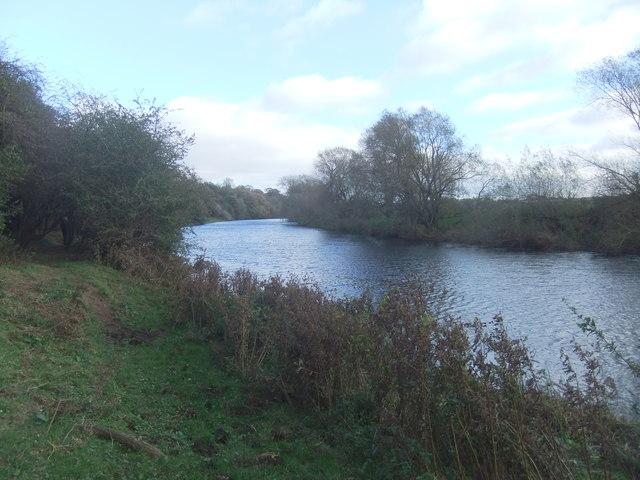 River Tees near Aislaby