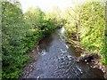 SJ9190 : River Goyt by Gerald England